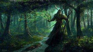 Druid02